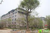 阳光东尚4月12日实景图