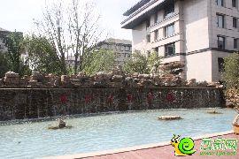 阳光东尚5月2日实景图