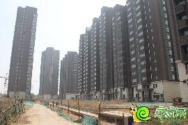 华信山水文苑二期实景图(2016.5.11)