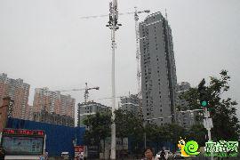 盛瑞华庭东区实景图(2016.07.15)