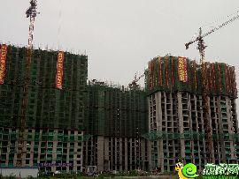 盛瑞华庭实景图(2016.7.9)