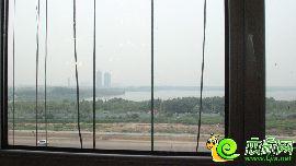 站在样板间窗前望北湖