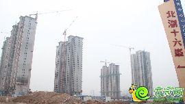 北湖十六峯工地实景图(2016.7.27)