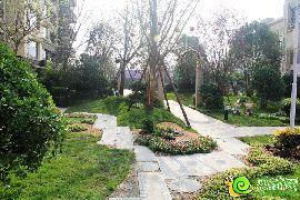 碧桂园天玺园林实景图