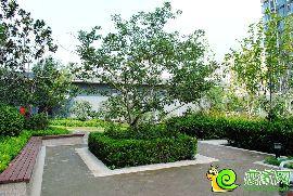 锦绣江南园林实景图