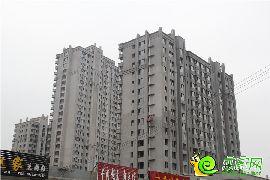 东城尚品项目实景(2017.5.7)