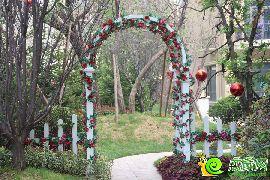 园林实拍花园拱门