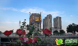 铂尔缦国际公馆实景图
