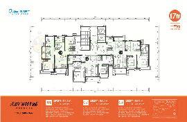 17号楼户型平面图