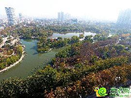 滏阳公园鸟瞰图