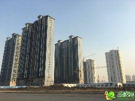 北湖十六峯工程实景(12.22)