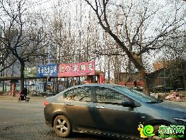碧桂園·天譽幸福路實景圖