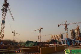 金百合北区工地实景图(1.13)