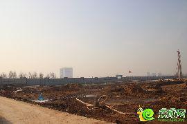 未来城工地实景(2017.1.14)