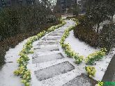 北湖十六峯雪景(2017.2.21)