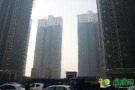 锦绣江南三期实景图(2017.2.15)