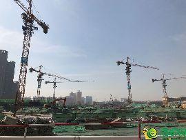 金百合北区工地实景图(3.14)