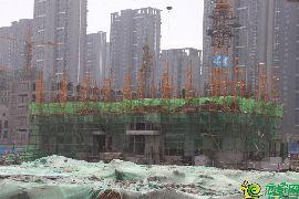 金百合北区工地实景图(4.11)