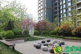 锦绣江南园林景观(2017.4.11)