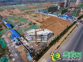 大美如园工程实景(2017.5.18)