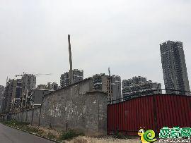 盛瑞华庭西区实景图(2017.6.18)