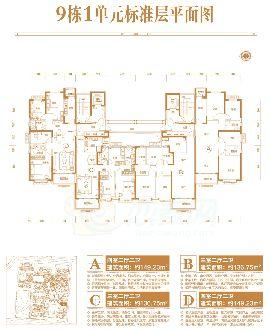 9号楼一单元标准层平面图