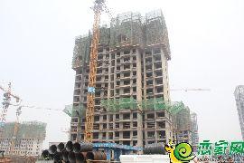 金百合北区4号楼(2017.7.9)