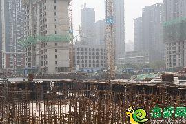 金百合北区5号楼(2017.7.9)