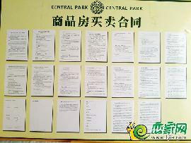 中央公园商品房合同公示(2017.7.1)