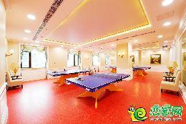 会所乒乓球室