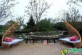 东部美的城园林示范区