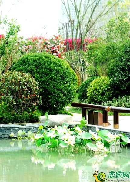"""细腻的风格,匠心筑造""""中式风情示范园林"""",借用古典园林的景观布局和图片"""