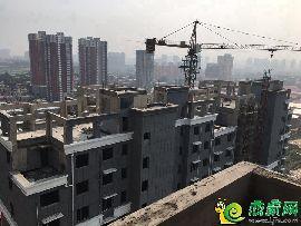 盛瑞华庭实景图(2017.8.3)