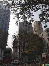 新城国际实景图(2017.9.24)
