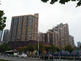 金世纪花园实景图(2017.9.16)