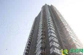 金水湾1#楼