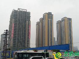 铂尔缦国际公馆实景图(2017.10.7)