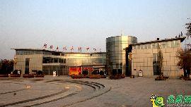 文化艺术馆