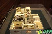 安居新城户型模型