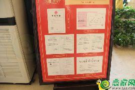 凤凰国际五证