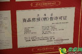 凤凰国际预售证