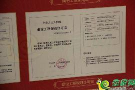 凤凰国际工程规划许可证