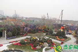 碧桂園天匯灣示范區園景
