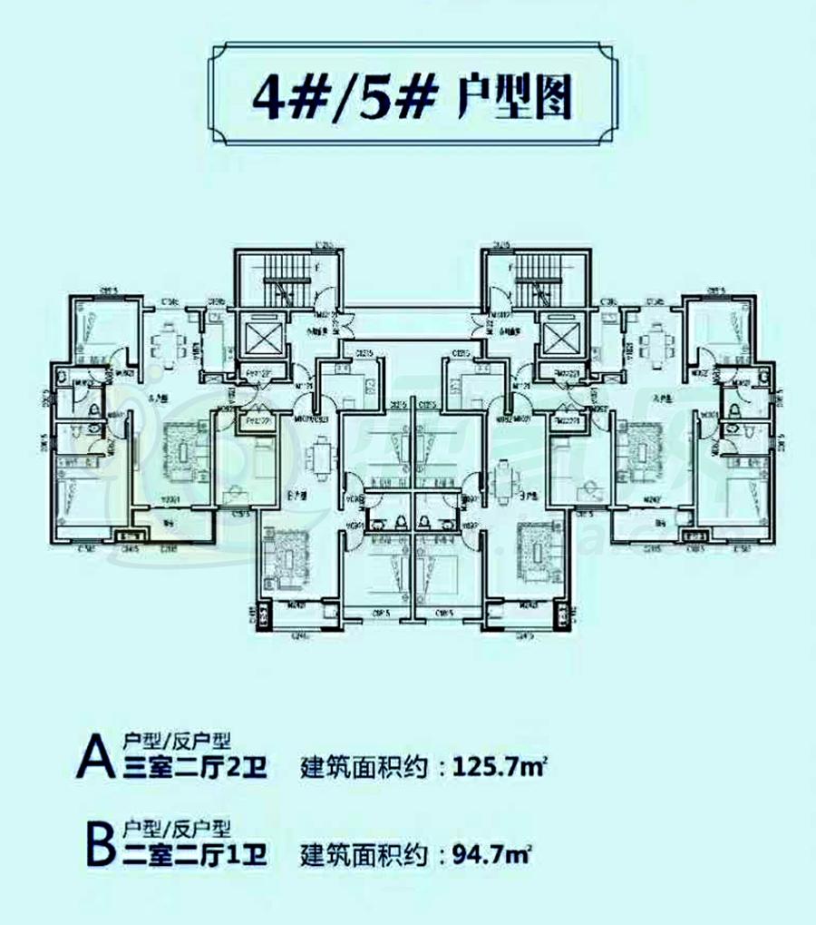 4#/5#户型