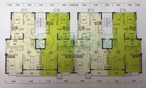 12、13号楼单元户型图