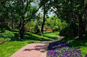锦绣百合苑 ▎给你一次欣赏美景之旅