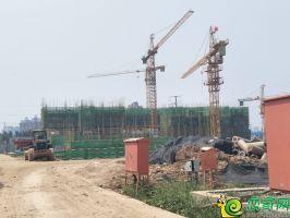 碧桂园越溪府工地实景图(2018.6.23)