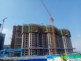锦绣江南实景图(2018.7.26)