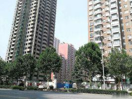 前进大街丰泰丰逸附近大产权金泽苑二期包更名 住房