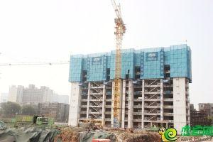 國瑞瑞城工地實景圖(2018.8.4)